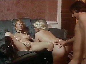 Brigitte Lahaie Delights be required of Adultery (1979)